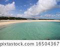 海灘 沙灘 東海岸 16504367