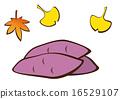 楓樹 黃葉 紅薯 16529107