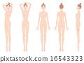 矢量 裸體 美容 16543323