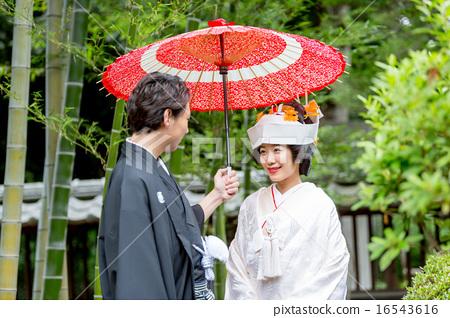 일본식 우산, 신랑 신부, 일본 전통 결혼 16543616