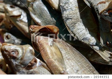 dried fish 16544351
