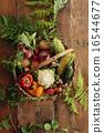 有機蔬菜 夏令時蔬 夏季蔬菜 16544677
