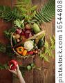 有機蔬菜 有機 天然 16544808
