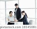 休闲 事业女性 商务女性 16545081