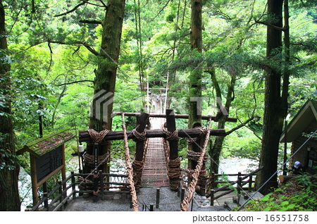 Iya Vine Bridge Kazura Bridge 16551758