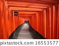 伏见Inari Taisha神社的Torii在京都 16553577