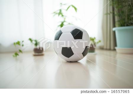 soccer ball 16557065