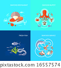 sea food flat 16557574