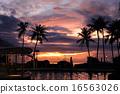 괌, 황혼, 해질녘 16563026