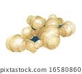 块根农作物 蔬菜 香料 16580860