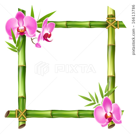 Green Bamboo Frame with Pink Orchid Flowers 16613786