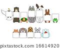 木板 動物 卡片 16614920