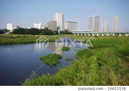 Tamagawa 16615538