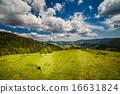 山峰 牧场 阿尔卑斯山脉 16631824
