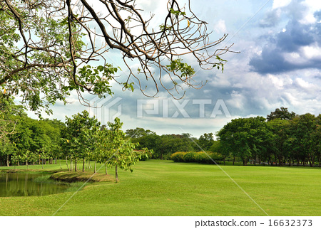 Green lawn on a golf field  with cloudy. 16632373