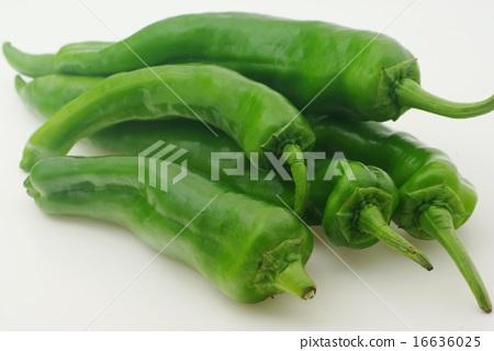 Manshakuji red pepper 16636025