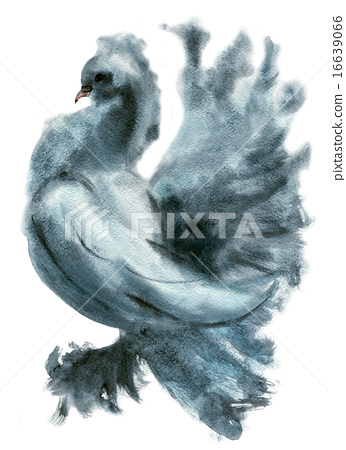 Watercolor illustration of a bird dove 16639066