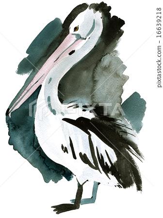 Watercolor illustration of a bird Pelican 16639218