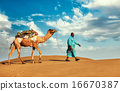 Cameleer camel driver with camels in Rajasthan, India 16670387
