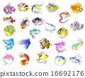 鱼 家畜 游泳 16692176