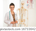 Portrait of happy medical doctor woman teaching anatomy using hu 16733642