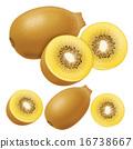 獼猴桃 奇異果 切開 16738667