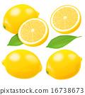 檸檬 切開 水果 16738673