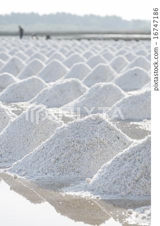 salt in the salt sea salt farm, Thailand location 16747186
