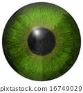 Eye iris generated hires texture 16749029