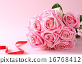 開花 花朵 花卉 16768412