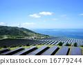 風力発電用風車とソーラーパネルが並んだ発電所 16779244