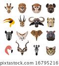 狮子 长颈鹿 动物 16795216