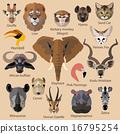 长颈鹿 动物 狮子 16795254