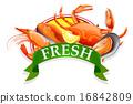 Seafood 16842809