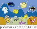 矢量 海面 密斑刺 16844130
