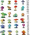 植物 植物學 植物的 16844865