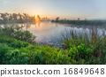 river,landscape,forest 16849648
