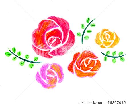 玫瑰 16867016
