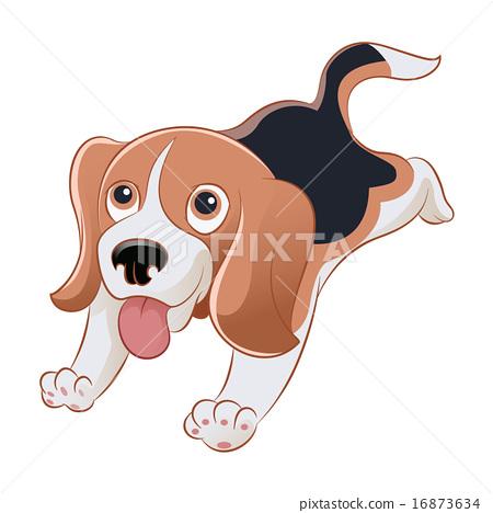 Beagle 16873634