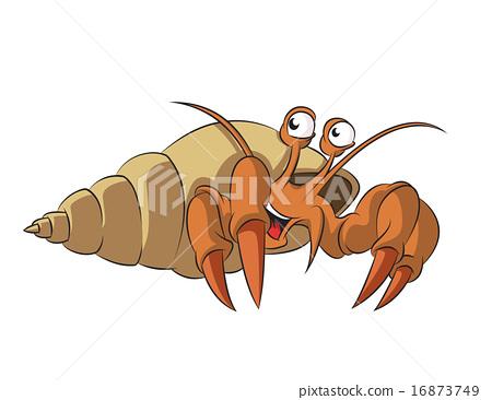 Hermit crab 16873749