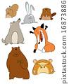 hare, fox, rabbit 16873886