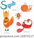 Very cute alphabet. S letter. 16874317