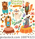 Vector Set of Cute Woodland and Forest Animals.  16874323