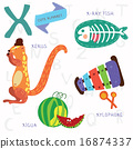 Very cute alphabet.X letter. 16874337