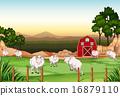 Goats 16879110