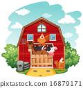 Farm animals 16879171