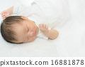 幼兒 人類 睡著 16881878
