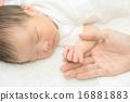 寶寶 寶貝 人類 16881883