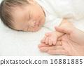 寶寶 寶貝 人類 16881885