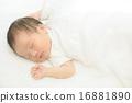 幼兒 寶寶 嬰兒 16881890